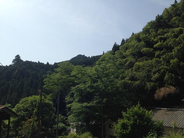 山小屋周辺の風景