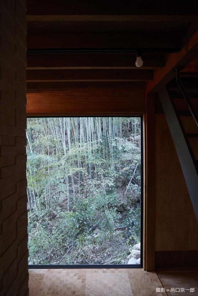 山小屋の窓から竹林を臨む