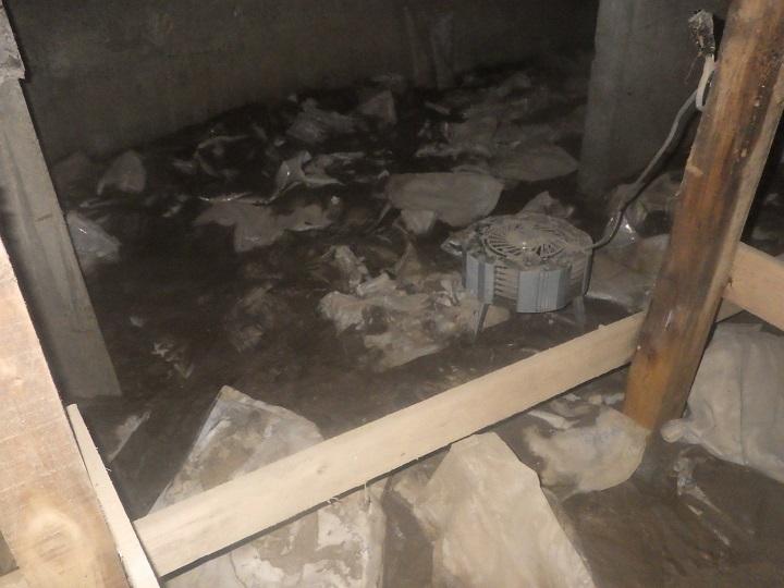 台風後の床下