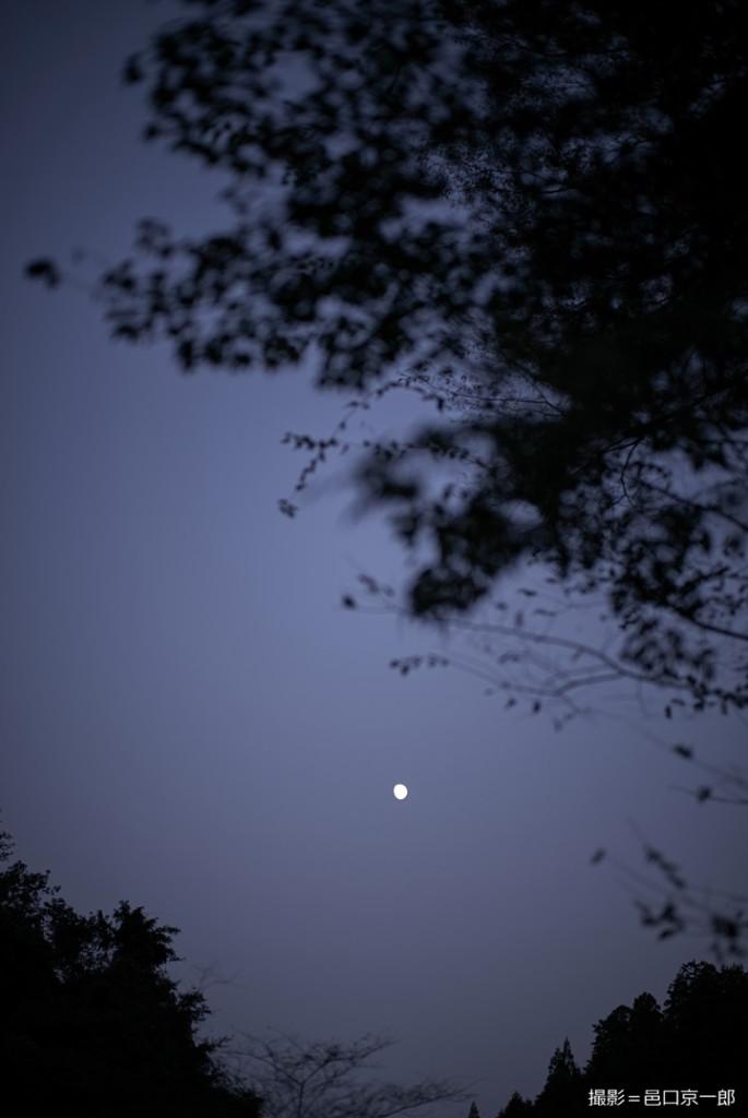 写真㉕夜の山