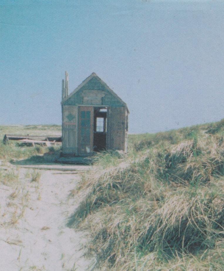 砂丘の小屋