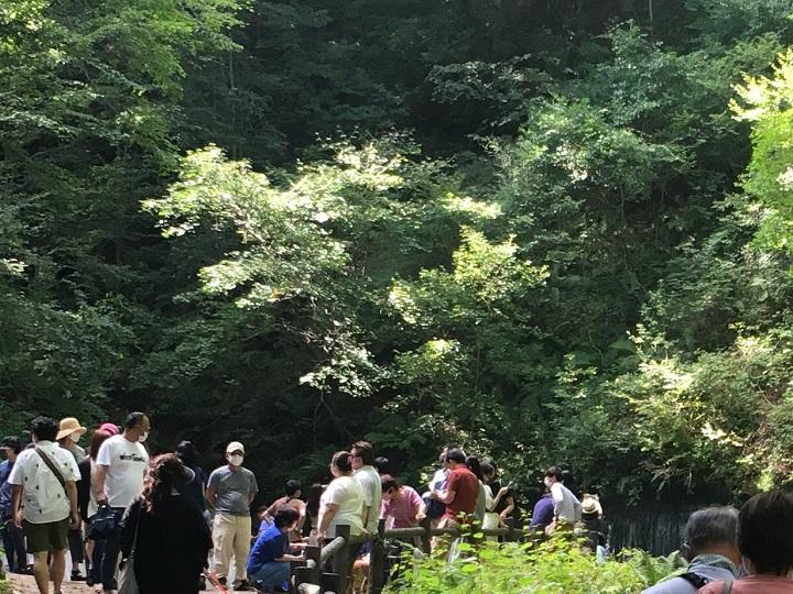 白糸の滝と観光客