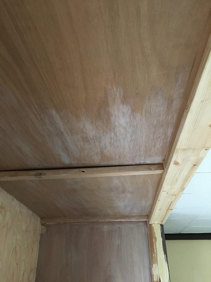 天井にプライマーを塗る