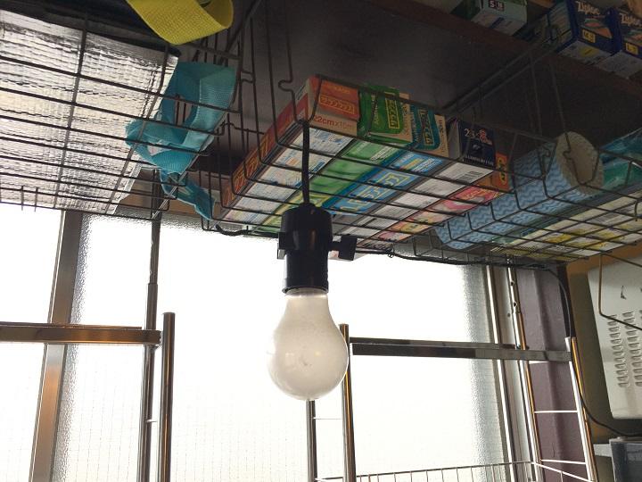 吊るした裸電球