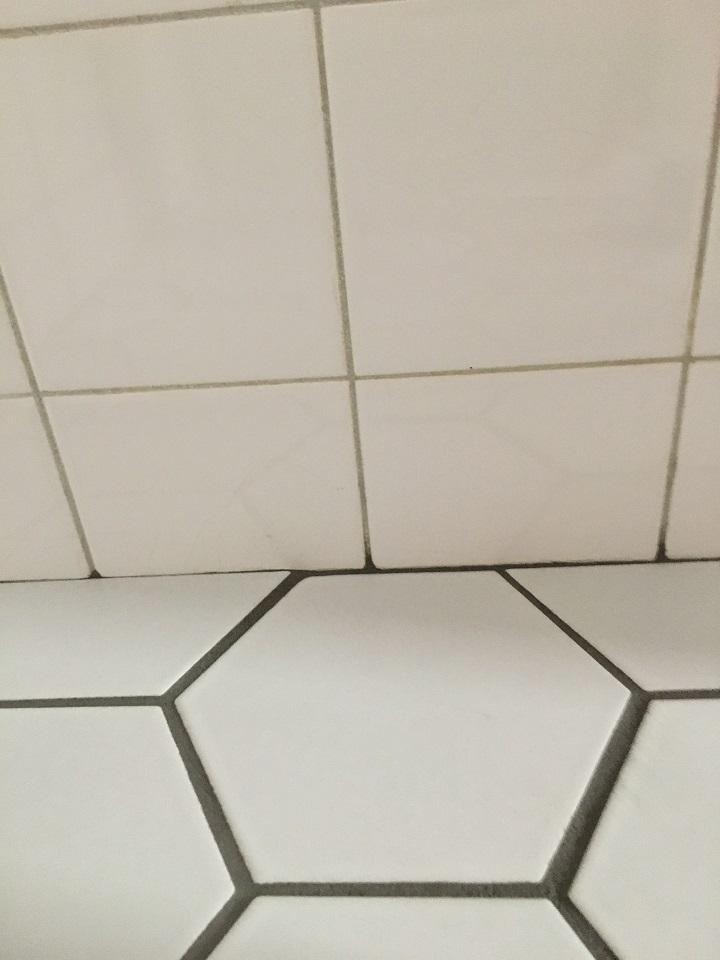 既存の壁タイルとの境目(乾燥前)