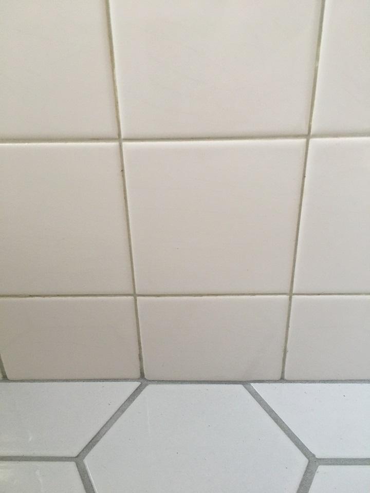 既存の壁タイルとの境目(乾燥後)