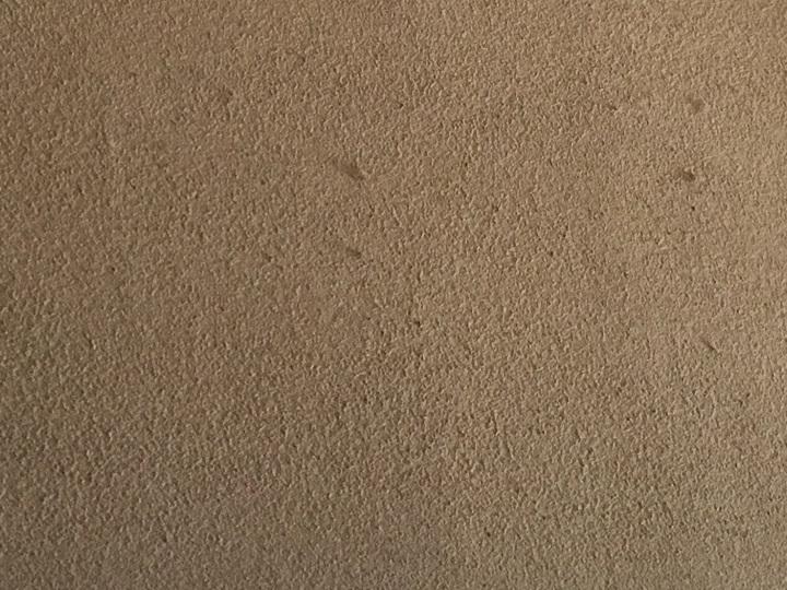 砂壁の質感