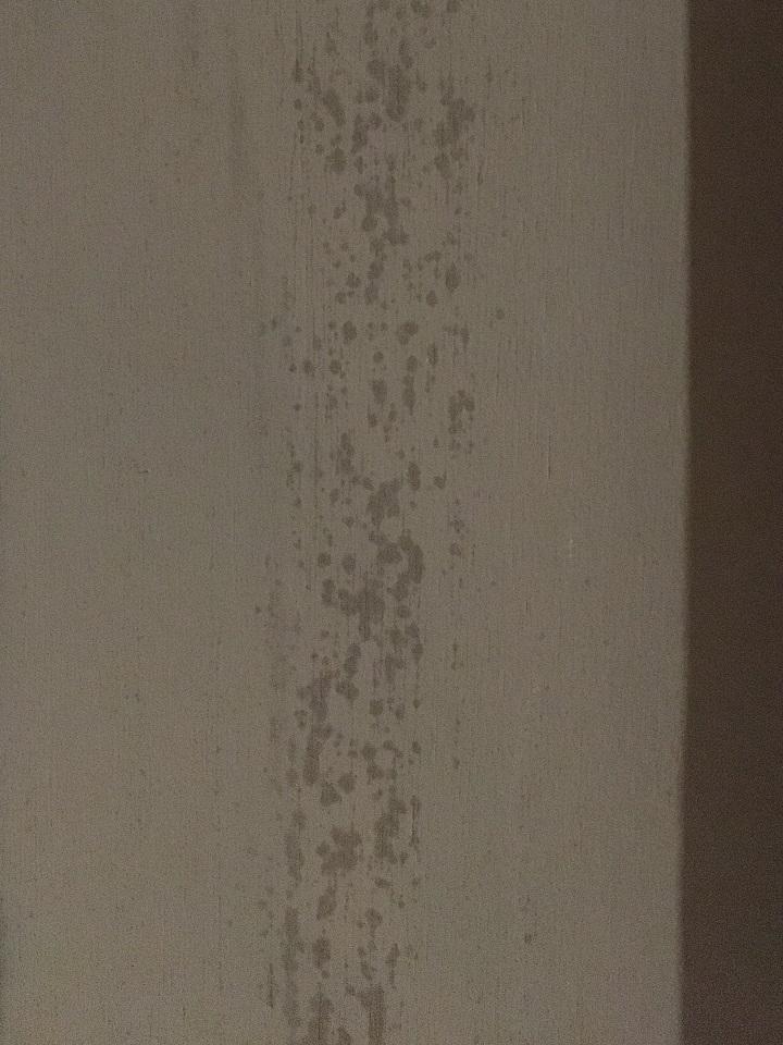 キッチンの壁のアク