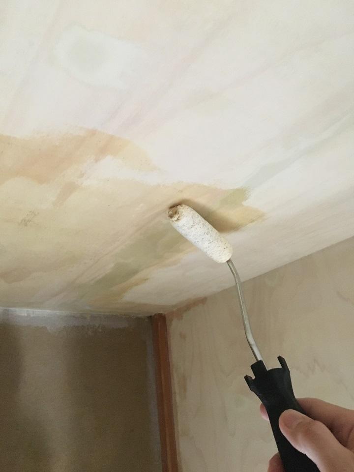 天井にシーラー塗装