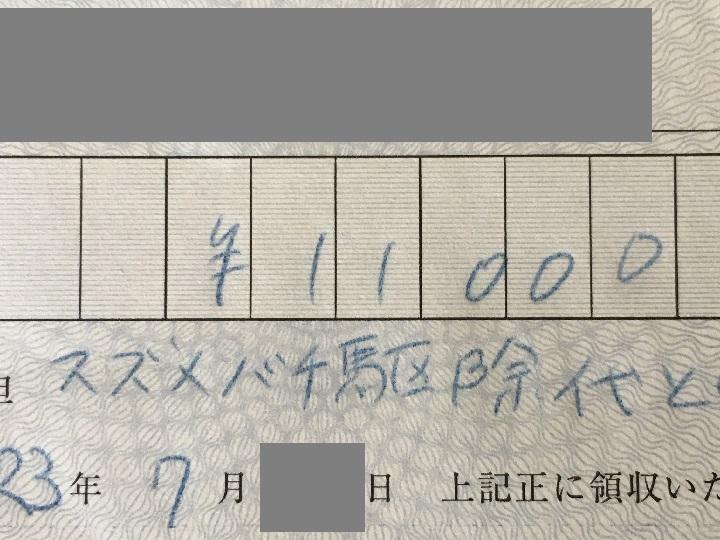 駆除の代金は11,000円